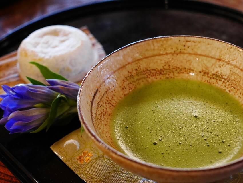 Kratom Tea – How To Make A Delicious Cup of Kratom Tea?